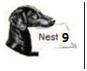 nest 9